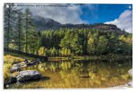 Blea Tarn, Lake District, Acrylic Print