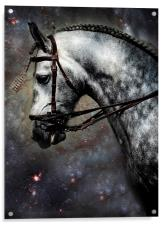 The Horse Among the Stars, Acrylic Print