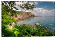 Ansteys Cove Torquay and Long Quarry Point, Acrylic Print