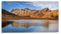 Langdale Pikes from Blea Tarn, Acrylic Print