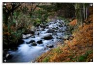 Autumn Stream in Wasdale at Wast Water, Acrylic Print