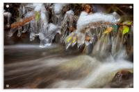 Icicles in a stream, Acrylic Print