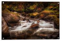 Textures of nature at Melincourt Brook, Acrylic Print