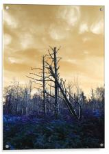 Death of The trees, Acrylic Print