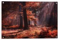 Fresh Autumn Woodlands, Acrylic Print