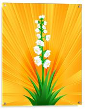 Blooming Yucca, Acrylic Print