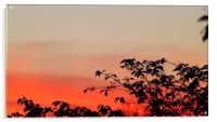 Sunrise in Tennessee, Acrylic Print