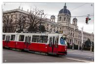 Old tram on the Ringstrasse line in the heart of , Acrylic Print