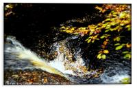 """""""AUTUMN LEAVES AT THE WATERFALL"""", Acrylic Print"""