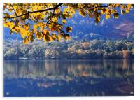 Autumn at Loweswater, Acrylic Print