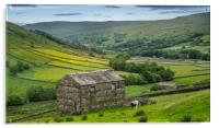 The old barns in Swaledale, Acrylic Print