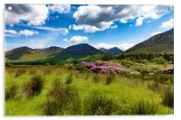 Ireland countryside with green grass and hills , Acrylic Print