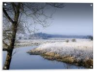 Frosty Morning by the River Wensum Norfolk, Acrylic Print