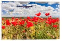 Poppy field and clouds, Granada Province, Spain, Acrylic Print
