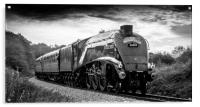 LNER Class A4 4488/60009 Union of South Africa, Acrylic Print
