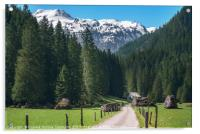Road toward the green forest and the Swiss Alps. S, Acrylic Print