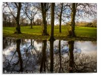 A Large Pool of Reflection, Acrylic Print
