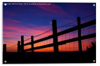 Sunset Fence, Acrylic Print