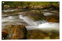 flowing river, Acrylic Print