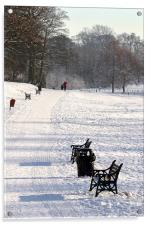 Resting place in Lurgan Park, Acrylic Print