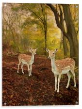 Two Little Deer's, Acrylic Print