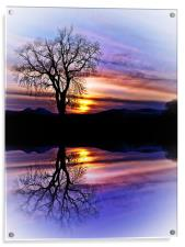 The Tree Of Reflections, Acrylic Print
