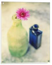 Flower and Old Bottles, Acrylic Print
