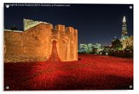 Tower of London Poppies, Acrylic Print