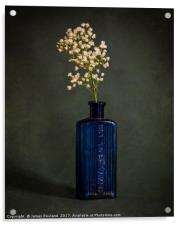 Blue Bottle with White Flowers, Acrylic Print