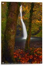 Surrounded by the Season, Acrylic Print
