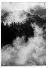 Emerging from the Fog, Acrylic Print