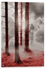 Forest Trees in Red, Acrylic Print