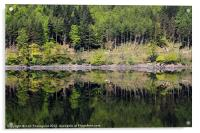 Reflections on Thirlmere, Acrylic Print