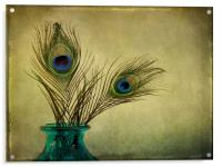 peacock feathers and vase, Acrylic Print