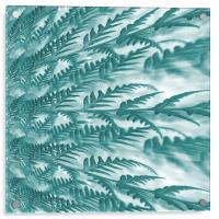 frosted fern, Acrylic Print
