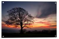 Hill Top Tree and Sunset, Acrylic Print