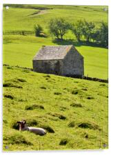 Lazy Day In The Peak District, Acrylic Print