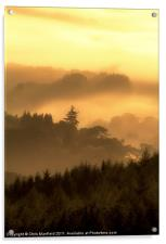 Misty Morning, Acrylic Print