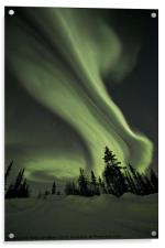 Northern Lights over the Midnight Dome, Acrylic Print