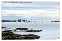 The Working Boats Race Falmouth 2018, Acrylic Print