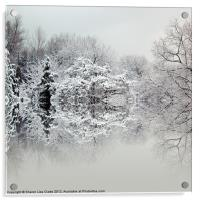 A winters tale, Acrylic Print