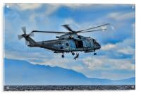 Royal Navy Helicopter, Acrylic Print