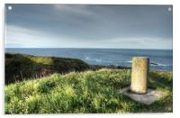 Cove Bay Coastal Path, Acrylic Print