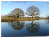 River Stour, Reflections    , Acrylic Print