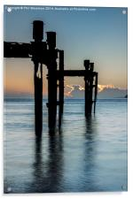 Dolphins at Lepe, Acrylic Print