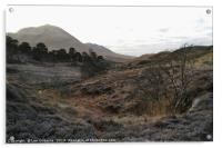 Winter Hike in the Highlands, Acrylic Print