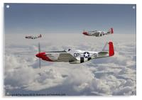 P51 Mustang - 334th Fighting Eagles, Acrylic Print