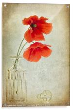 Two Poppies in a Glass Vase, Acrylic Print