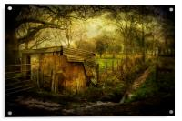 The Old Shed, Acrylic Print