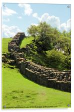 Hadrians Wall Marching Across The Landscape, Acrylic Print